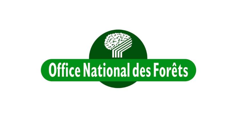 Jours de chasse en battue en Forêt Domaniale de Montfort 2021/2022 et réglementation sur la cueillette des champignons